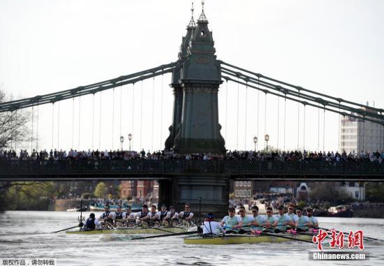 资料图片:牛津剑桥赛艇对抗赛在英国伦敦泰晤士河上举行。