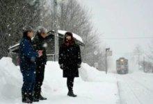 多伦多两名女留学生设局 加拿大一名华人被骗15万-留学世界网