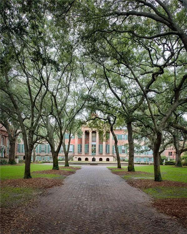 颜值即正义,这20所公立大学美哭!