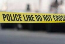 中国留学生加拿大聚众伤人 警察来了 全跪下了..-留学世界网
