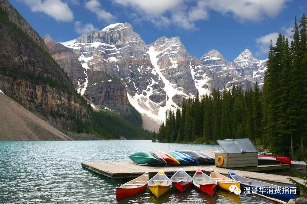 悲剧,两名学生于温哥华岛遇难…夏天到了,露营时这些危险操作请不要再犯!