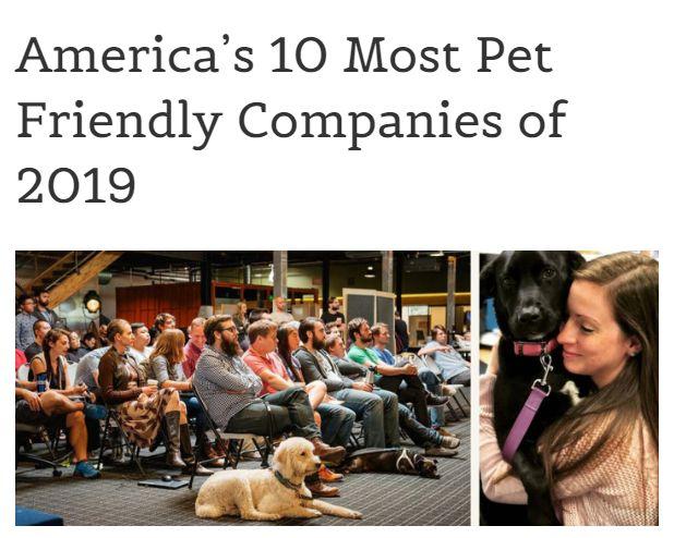"""免费吸猫撸狗的工作?美国这10家公司,进去了就是""""人生赢家""""!"""