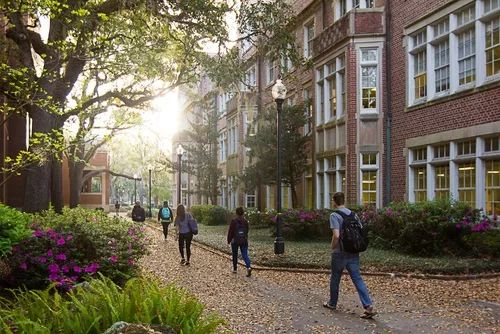 除了加州系,你还可以选择美国哪些顶尖的公立大学?