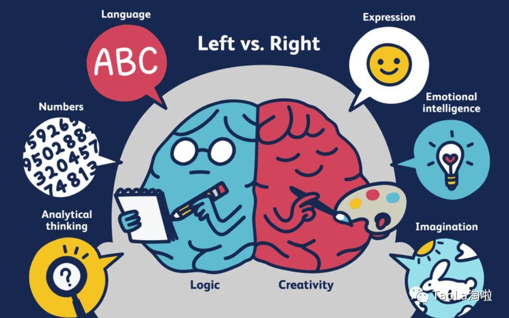 TED演讲又火了:会多种语言的孩子真的比单一语言小孩更聪明吗?