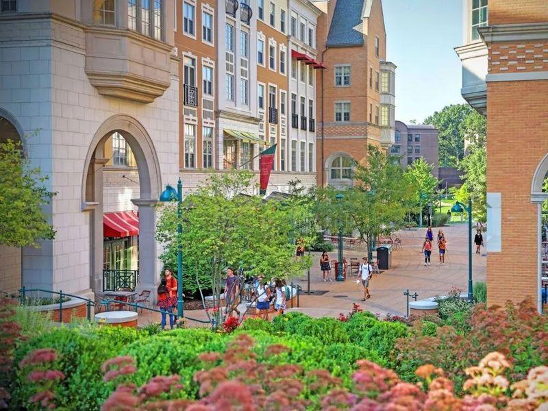 上全美最贵的20所大学,10年内学费能回本吗?