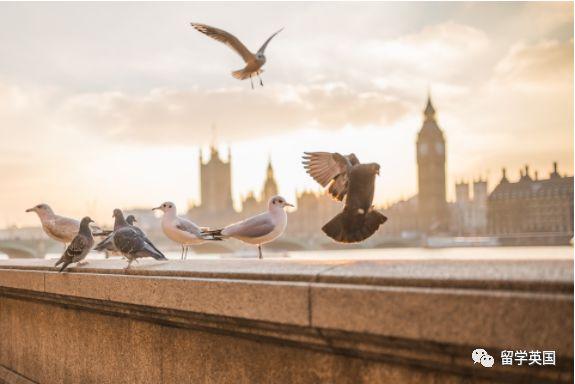 英国留学城市前三,一起看一下吧!