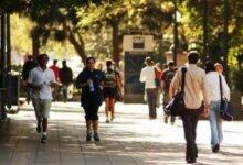 1/3留学生找工作求职被剥削!这才是留学生在国外的真实生活-留学世界网