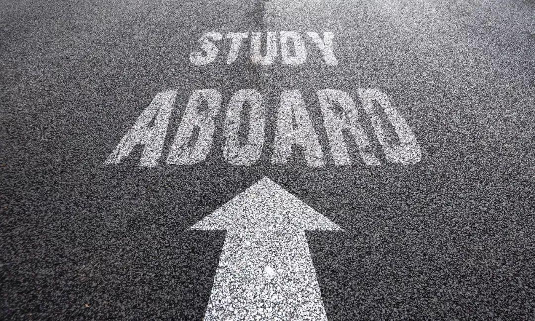 """当""""考研季""""撞上""""留学申请季"""",做两手准备到底有多刺激?"""