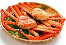 一吃起螃蟹,不爱说话的日本人就更沉默了-留学世界网
