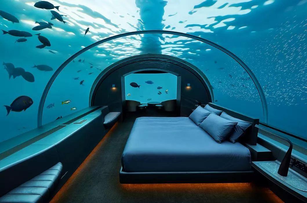 马尔代夫康莱德的水下客房,玻璃用18厘米厚,住一晚要 15 万