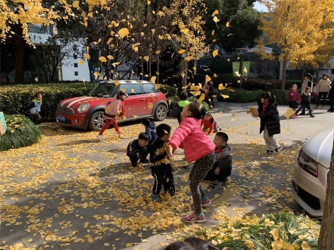 要入冬了!杭州今年最后一波校园深秋大片上映!为你的最爱打call