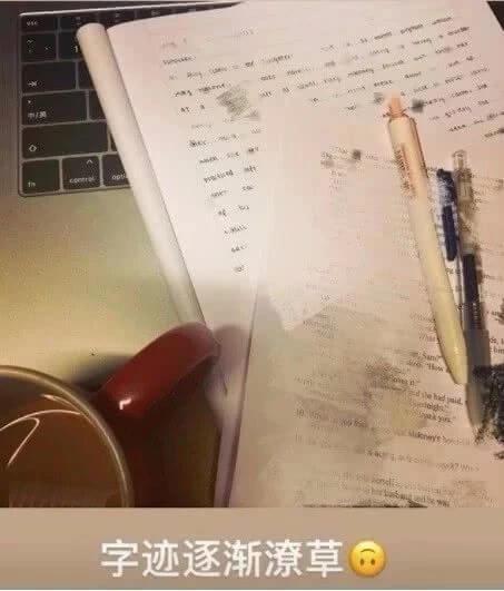 """王菲的女儿李嫣读瑞士贵族学校留学 考试却交白卷,大呼""""数学与我无缘"""""""