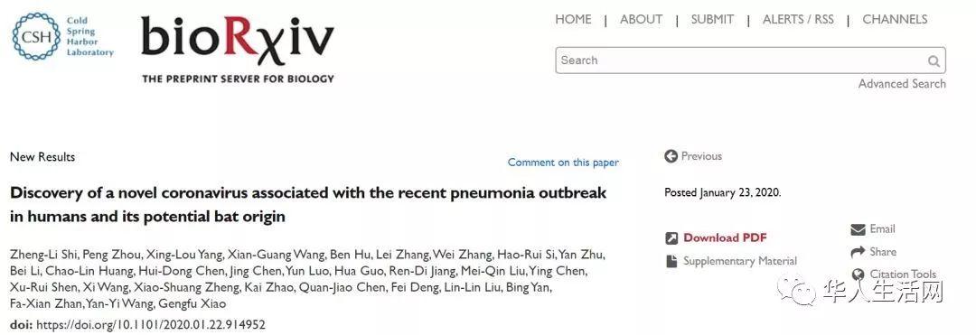 蝙蝠传蛇、蛇再传人! 知名科学期刊揭武汉肺炎来源