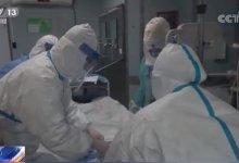 香港大学病毒学家金冬雁教授呼吁 #武汉肺炎 最坏的情况要交个底说清楚-留学世界网