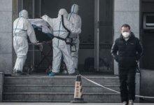 武小华博士想和 #石正丽 公开对质 #武汉肺炎 #新型冠状病毒 是不是从实验室出来的-留学世界网