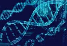 比尔·盖茨:新冠肺炎可能成为百年不遇的大流行病 #武汉肺炎 #新型冠状病毒 #武汉疫情 #COVID19-留学世界网