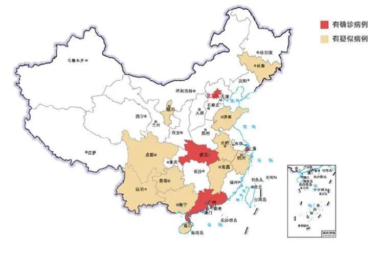 张文宏新冠肺炎复盘(2):以为是黑天鹅,其实是灰犀牛