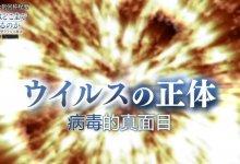 为了不让 #日本 成为第二个 #武汉 , #NHK 纪录片真敢说! #武汉肺炎 #新型冠状病毒 #武汉疫情 #COVID19-留学世界网
