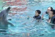 一家4口全被感染,丈夫决定自救……  #武汉肺炎 #新型冠状病毒 #武汉疫情-留学世界网