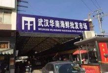 特别报道 | 假如武汉的警铃有机会被拉响,可以是哪天?  #武汉肺炎 #新型冠状病毒-留学世界网