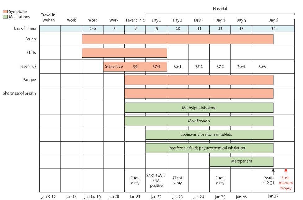 新冠患者首个病理报告出炉:病理特征与SARS、MERS非常类似