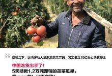 集美们,我已经放弃购物了。  #武汉肺炎 #新型冠状病毒 #武汉疫情-留学世界网