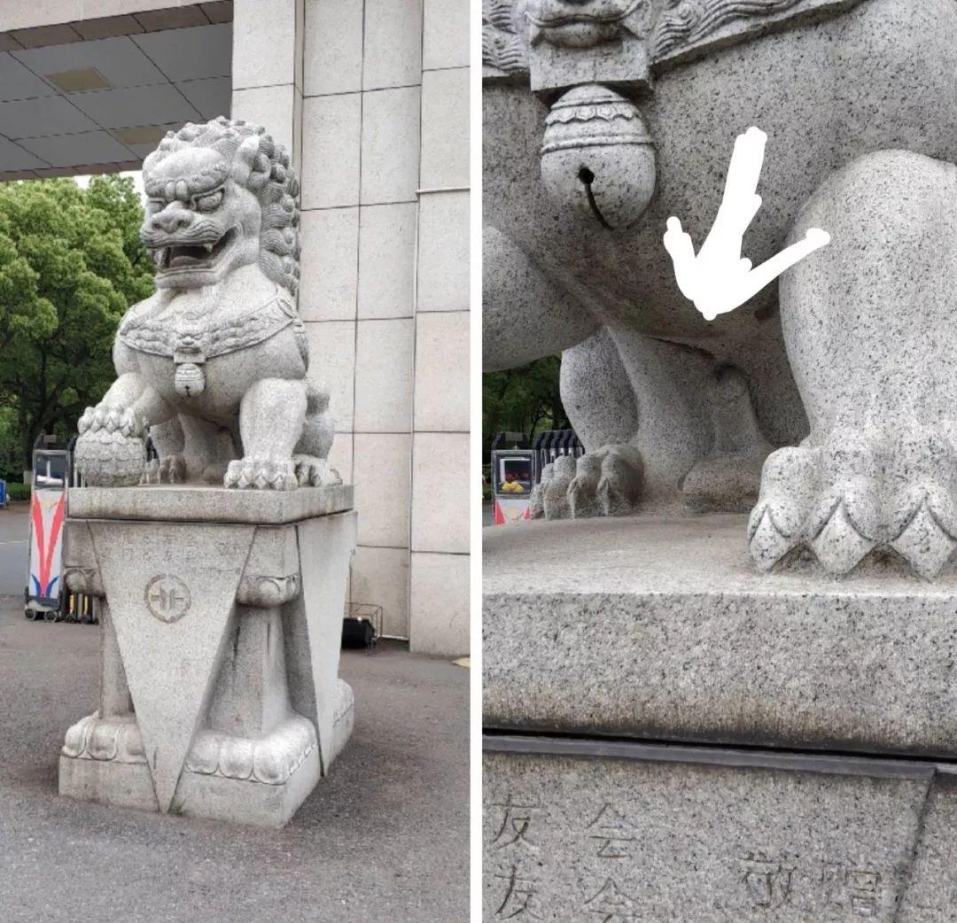 北大的公石狮子被人做绝育了