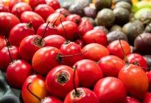 南美奇葩水果大汇总-留学世界网