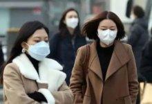 一名中国洋女婿 #武汉肺炎 #新型冠状病毒 疫情日记 建微信群吐槽加拿大使领馆-留学世界网