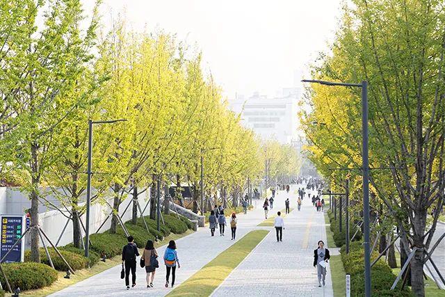 韩国留学 | 百起真实案例教你如何另辟蹊径进入韩国好大学