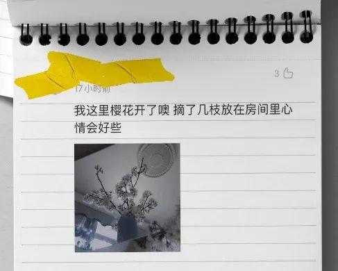 每天都有成千上万人在李文亮微博下写日记