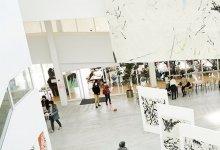 #日本 美术大学|想考 #美术专业 ,你需要了解这些!-留学世界网