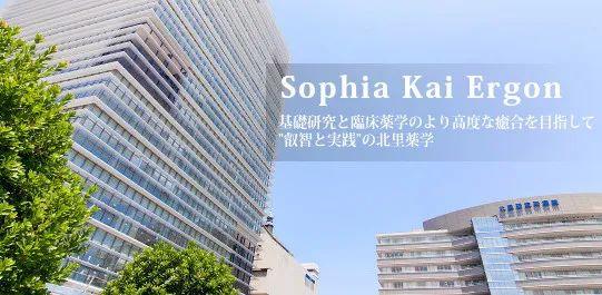 日本考大学推荐|一直深藏功与名,这些大学辛苦了!