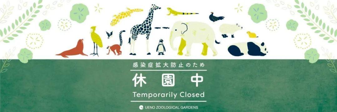 疫情期间不能出门?日本人是这样看展、赏花、逛时装周的!