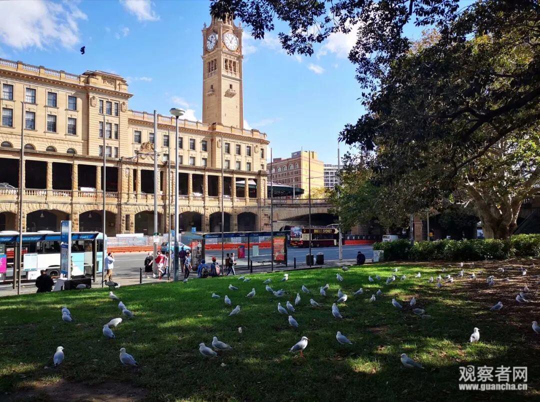 澳大利亚留学生:机场有人宁愿放弃绿卡也要回国