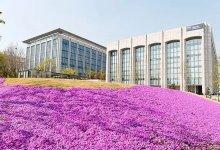 没有TOPIK等级的情况下,如何申请韩国大学?-留学世界网