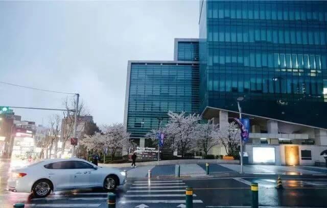 留学韩国逃不掉的选择题,到底是留下还是回国?