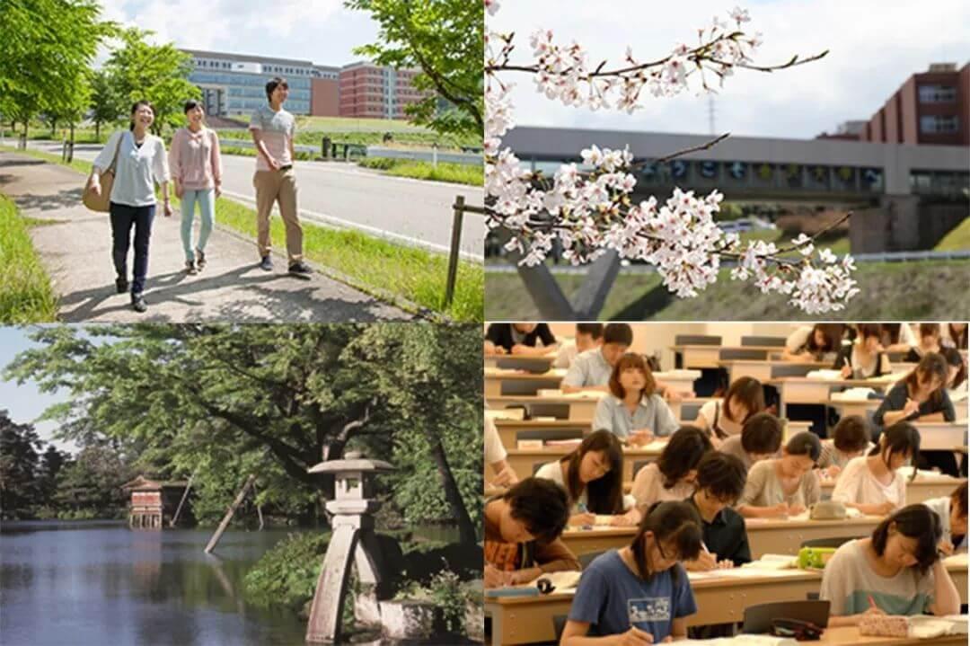 冷门、低调,却很无敌的日本大学专业盘点