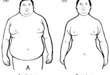 肥胖的东亚人有多危险-留学世界网