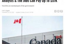 加拿大卫生部公开招聘这职位,年薪近6万-留学世界网